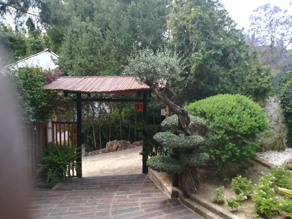 Japanese section of the Botanical Garden in Torremolinos