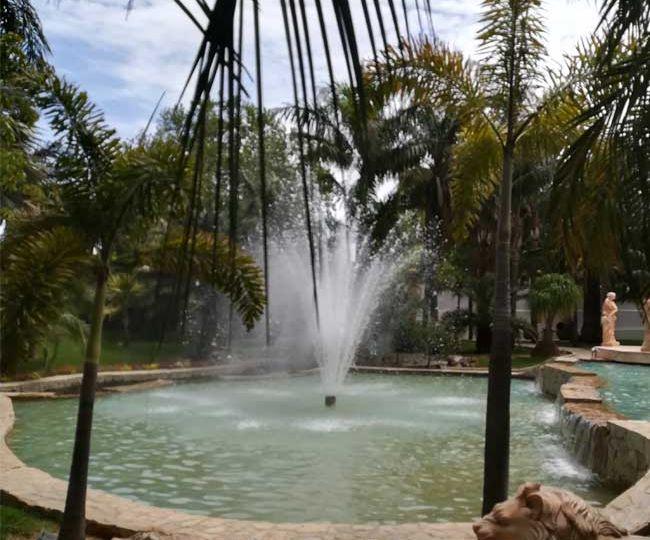 botanical-gardens-malaga-featured-image